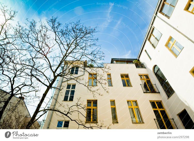 Kollwitz Häusliches Leben Wohnung Haus Natur Himmel Frühling Klima Klimawandel Wetter Schönes Wetter Baum Stadt Hauptstadt Stadtzentrum Bauwerk Fassade gut