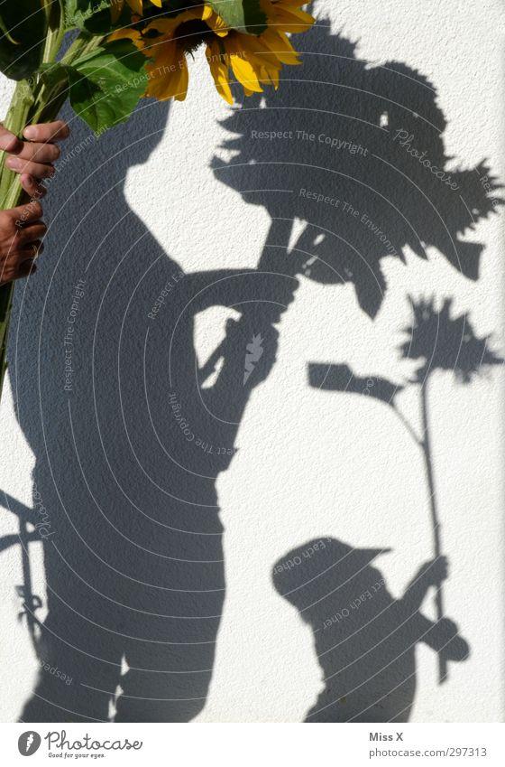 Sonnenblumen für Mutti Mensch Kind Jugendliche Sommer Blume Erwachsene Liebe Gefühle 18-30 Jahre Blüte Familie & Verwandtschaft Stimmung Geburtstag groß Geschenk Romantik