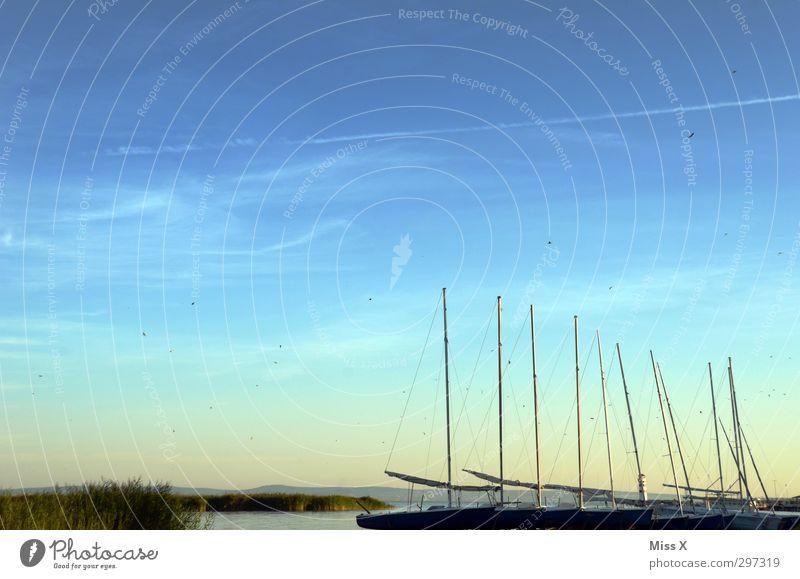 Steg Ferien & Urlaub & Reisen Sommer Meer ruhig Strand Erholung Freiheit Küste Stimmung Vogel Wellen Freizeit & Hobby Insel Ausflug Hafen Bucht