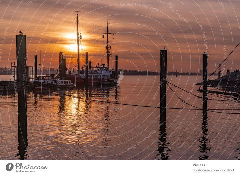 Ruhe finden Övelgönne Stadt Hafenstadt Sehenswürdigkeit Wahrzeichen Schifffahrt Binnenschifffahrt Dampfschiff Wasserfahrzeug Anker entdecken