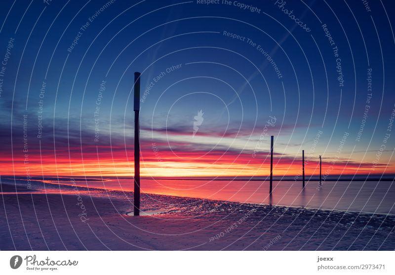 Sonnenuntergang an weitem Nordseestrand mit vier Holzpfählen St. Peter-Ording Sommerurlaub Meer Ferien & Urlaub & Reisen Dämmerung Abend Außenaufnahme maritim