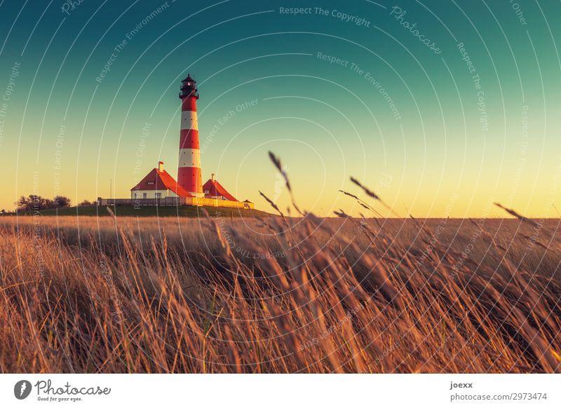 Westerheversand alt Sommer blau schön weiß Landschaft rot Gras orange Horizont Idylle Schönes Wetter hoch historisch Sehenswürdigkeit Wolkenloser Himmel