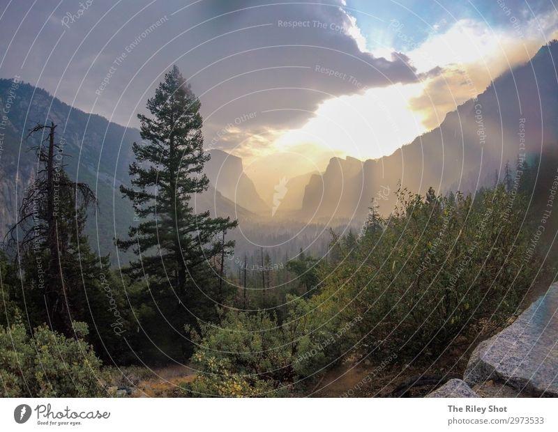 Himmel Ferien & Urlaub & Reisen Natur Sommer blau Farbe schön grün Landschaft Sonne Baum Wald Berge u. Gebirge natürlich Gefühle Gras
