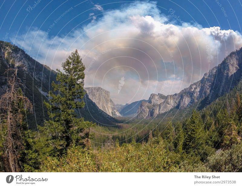 Himmel Ferien & Urlaub & Reisen Natur Sommer blau Farbe schön grün Landschaft Sonne Baum Wolken Wald Berge u. Gebirge Gesundheit Umwelt