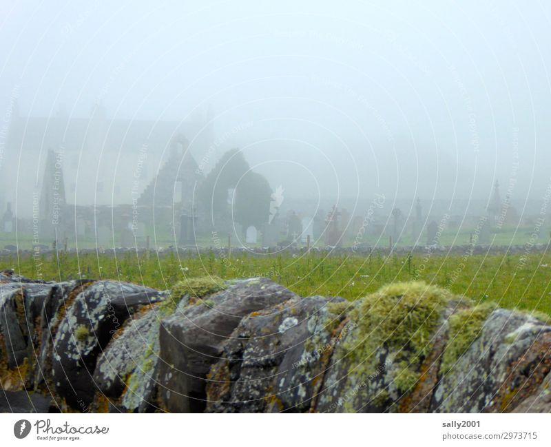 nebulös   letzte Ruhe... alt Einsamkeit ruhig dunkel Religion & Glaube Traurigkeit Gras Mauer Nebel Kirche Vergänglichkeit Trauer gruselig Moos Ruine
