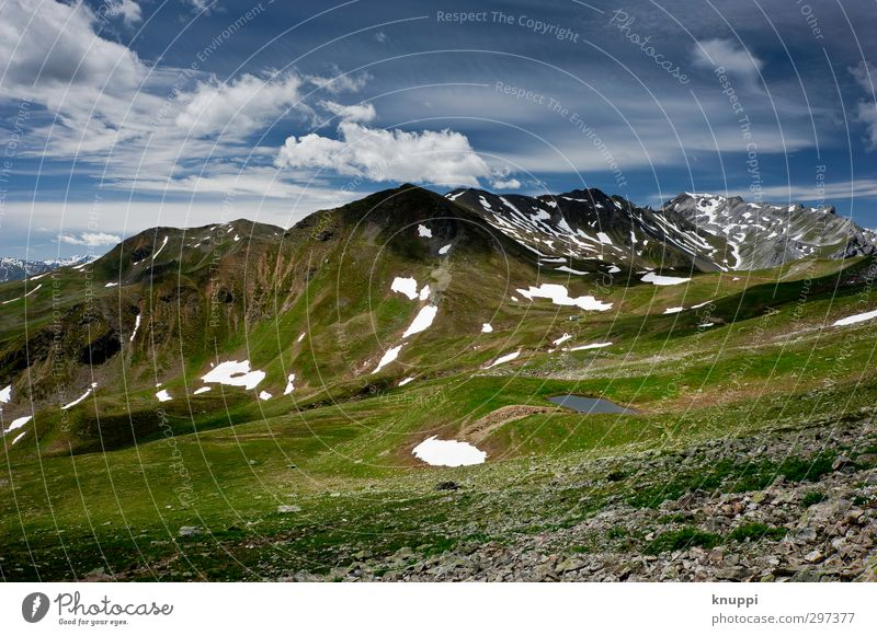 2350 m.ü.M. Umwelt Natur Landschaft Pflanze Urelemente Erde Wasser Wolken Sonne Sonnenlicht Sommer Schönes Wetter Eis Frost Schnee Gras Alpen Berge u. Gebirge