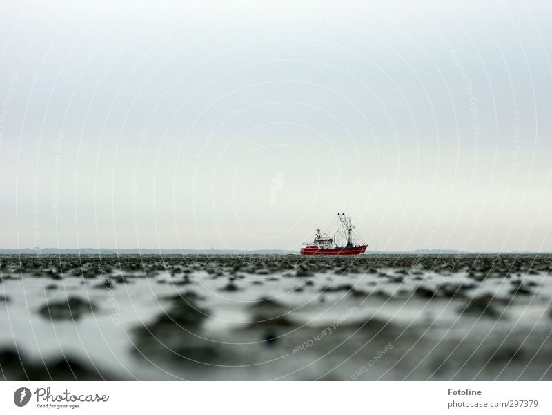 Rømø | Kutter Umwelt Natur Landschaft Urelemente Erde Wasser Himmel Küste Nordsee Meer kalt nass grau rot Wasserfahrzeug Fischerboot Wattenmeer römö Farbfoto