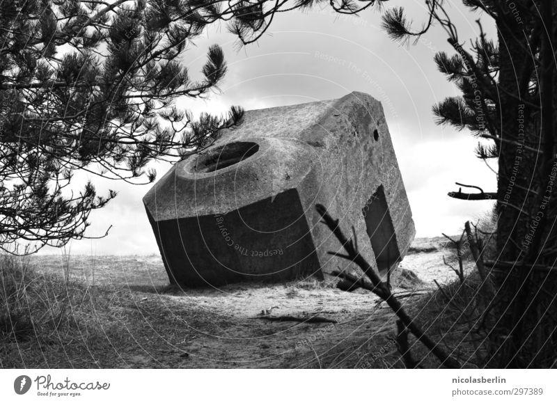 Rømø | in den Sand gesetzt.. dunkel Wand Mauer Sand geheimnisvoll stark skurril Krieg Bunker