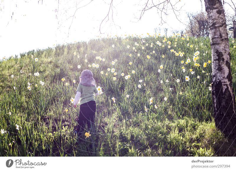 Im Frühling zu Berge Mensch Kind Natur Pflanze Baum Blume Tier Umwelt Wiese Junge Berlin Garten Park Körper Kindheit