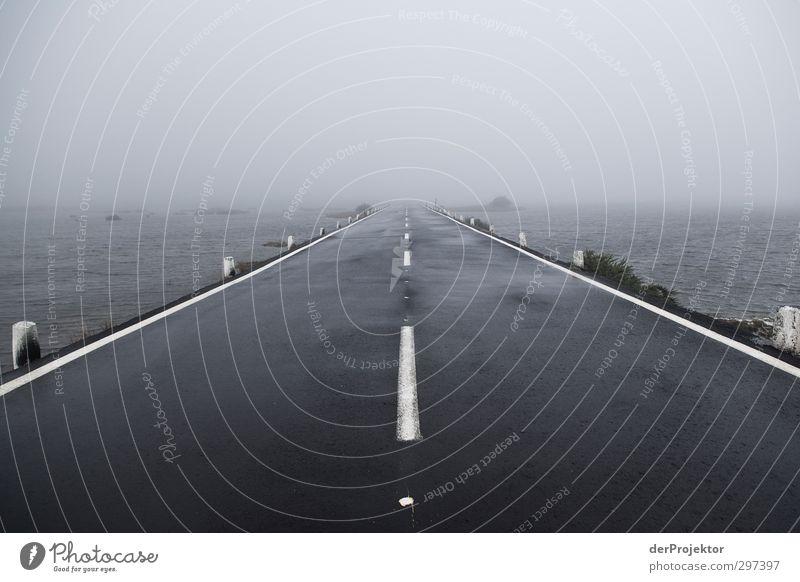 Straße ins Nichts Umwelt Wasser Herbst schlechtes Wetter Unwetter Nebel Regen Verkehr Verkehrswege Autofahren Hochstraße Gefühle Fernweh Einsamkeit