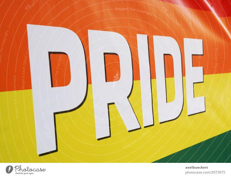 Regenbogenfahne bei LGBT Pride Event Lifestyle Party Veranstaltung Feste & Feiern Homosexualität Zeichen Fahne mehrfarbig Symbole & Metaphern Transgender