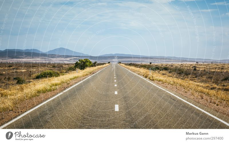 Endlose Reise Ferien & Urlaub & Reisen Sommer Landschaft Himmel Wolken Horizont Straße Bewegung Asphalt Richtung Australien Steppe Hügel trocken Grasland karg