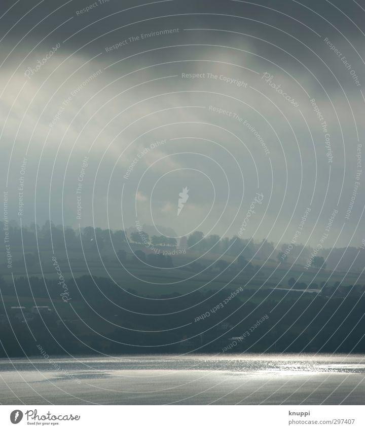 Silbersee Umwelt Natur Landschaft Luft Wasser Himmel Wolken Horizont Sommer Schönes Wetter Nebel Pflanze Baum Hügel Seeufer Ferne schön weich grau grün silber