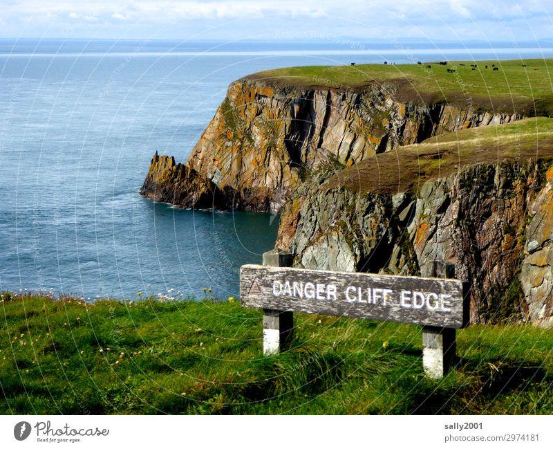 ab hier wird's gefährlich... Natur Landschaft Schönes Wetter Wiese Küste Meer irische see irish sea Schottland Kuh Herde Hinweisschild Warnschild Ferne