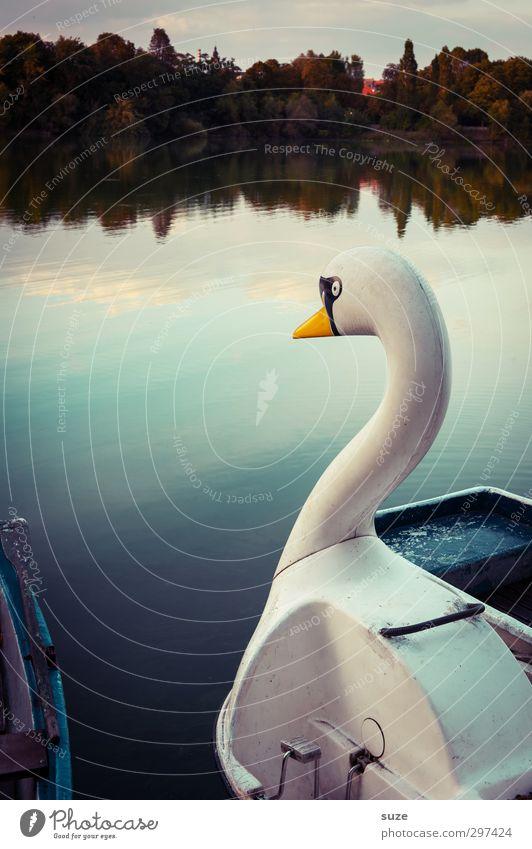 Seeungeheuer Lifestyle elegant schön ruhig Freizeit & Hobby Umwelt Natur Wasser Horizont Schönes Wetter Seeufer Bootsfahrt Ruderboot Tretboot Wasserfahrzeug