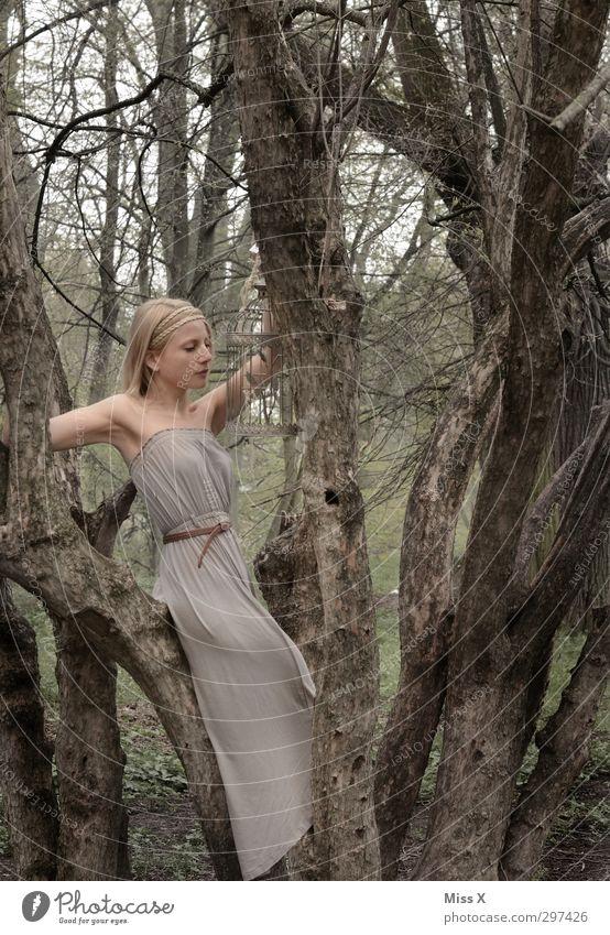 grau in grau Junge Frau Jugendliche 1 Mensch 18-30 Jahre Erwachsene Baum Sträucher Park Wald Kleid blond schön Hochmut Käfig Ast Baumstamm Vogel fangen