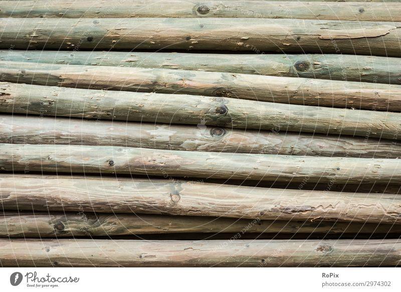 Detail eines Stapels imprägnierter Holzpfähle. Maserung Jahresringe Moos Abstrakt Zerfall verwittert Holzwirtschaft Landwirtschaft Brennholz Baumstupf Natur