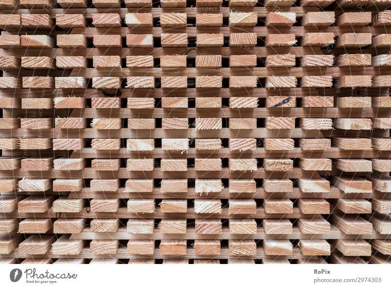 Zum trocknen gestapelte Dachlatten. Holz Maserung Jahresringe Moos Abstrakt Zerfall verwittert Holzwirtschaft Landwirtschaft Brennholz Baumstupf Natur wallpaper
