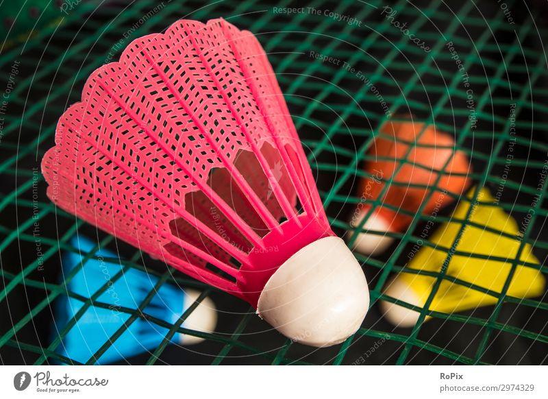 Badminton-Birdie auf einem Schläger. Lifestyle Stil Design Gesundheit sportlich Fitness Wellness Leben Freizeit & Hobby Spielen Sport Bildung Kindergarten