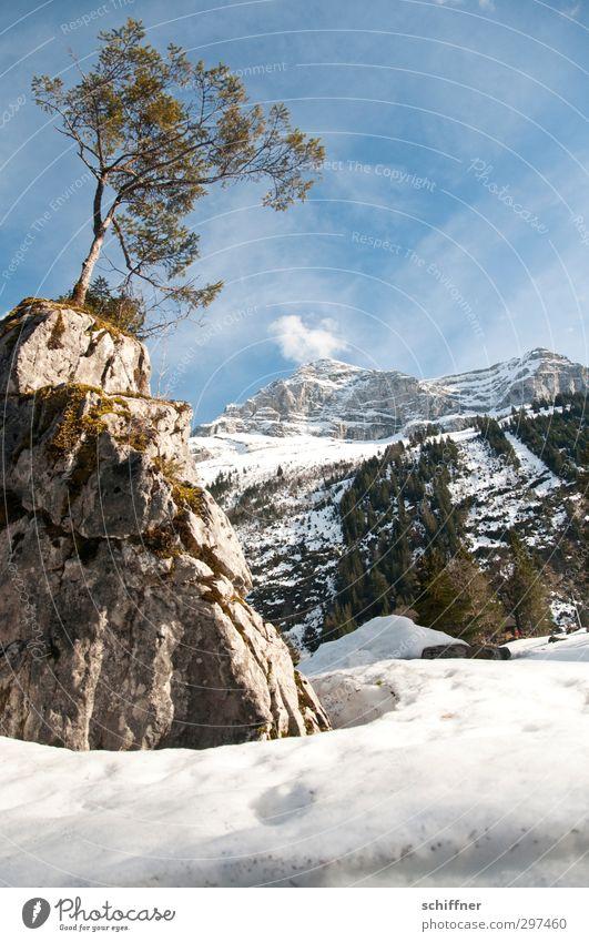 Höhepunkt Umwelt Natur Landschaft Himmel Sonnenlicht Winter Schönes Wetter Eis Frost Schnee Baum Felsen Alpen Berge u. Gebirge Gipfel Schneebedeckte Gipfel kalt