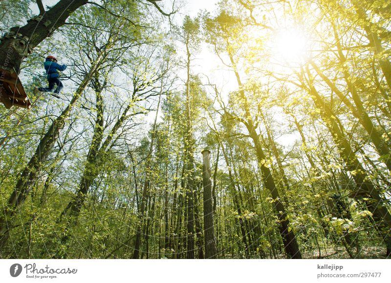 tarzan Mensch Kind Wald Sport Bewegung Junge springen Körper Kindheit Seil Bildung Klettern Mut 8-13 Jahre Baumkrone Bergsteigen