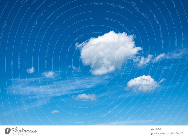 Weiße Wolken am blauen Himmel Umwelt Frühling Klima Wetter weiß Farbe Idylle nachhaltig Natur ruhig Cirrus Schleierwolke Atmosphäre Hintergrundbild heiter