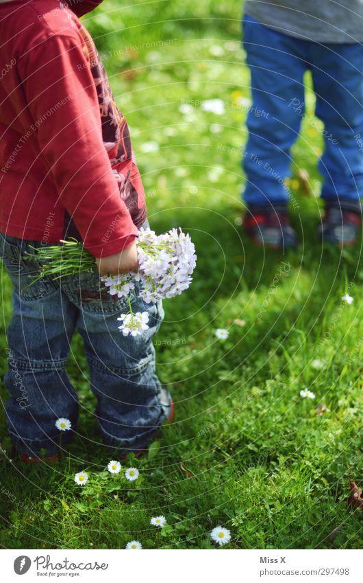 Muttertag Mensch Kind Sommer Pflanze Blume Wiese Gefühle Gras Frühling klein Blüte Beine Garten Freundschaft Familie & Verwandtschaft Kindheit