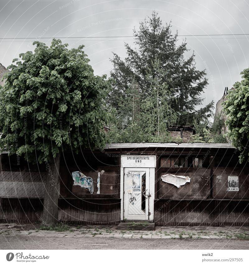 Drei Sterne Pflanze Baum Bauwerk Gebäude Restaurant Gastronomie Fassade Tür Straße Bürgersteig alt historisch trashig Verfall Vergänglichkeit Zerstörung