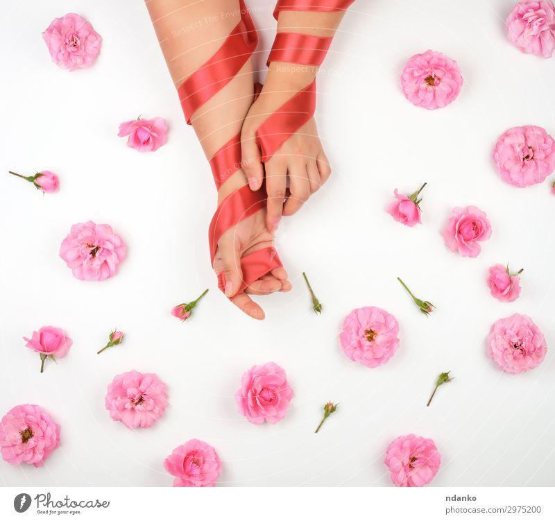 Hände mit glatter Haut umwickelt mit rotem Seidenband elegant schön Kosmetik Behandlung Wohlgefühl Spa Sommer Dekoration & Verzierung Feste & Feiern Hochzeit