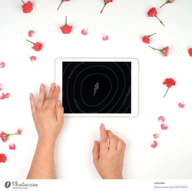 zwei weibliche Hände Haltevorrichtung Büro Business PDA Computer Bildschirm Technik & Technologie Internet Frau Erwachsene Hand Finger Blume berühren kaufen