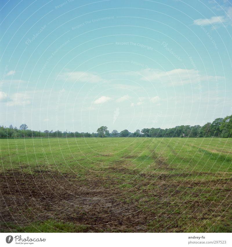 Sommer Himmel Natur blau grün Landschaft Wolken ruhig Erholung Umwelt Ferne Gras Frühling Erde Horizont natürlich