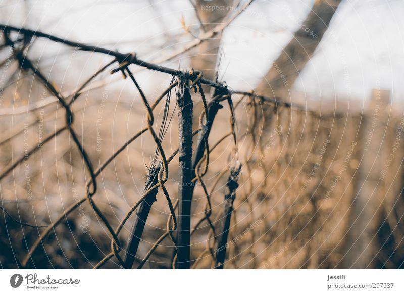 torn Kabel Sturm Zaumzeug Rost Zeichen Linie Netzwerk Trennung spannungslos Begrenzung Gefühle Leidenschaft Schutz Freundschaft Treue Opferbereitschaft