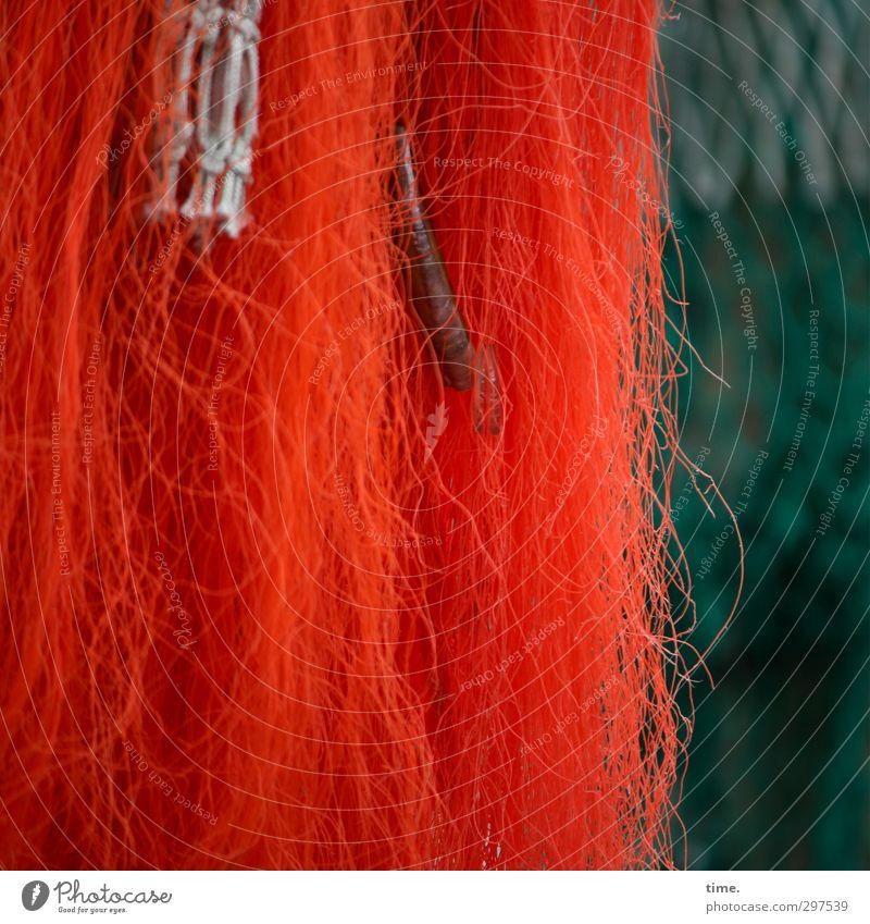Rømø | RotGrünMurks mit Beifang Arbeit & Erwerbstätigkeit Ordnung Design Vergänglichkeit Pause Netzwerk Kunststoff Güterverkehr & Logistik Zusammenhalt