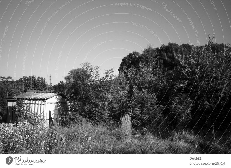 Schuppen Wald Wiese Feld Scheune