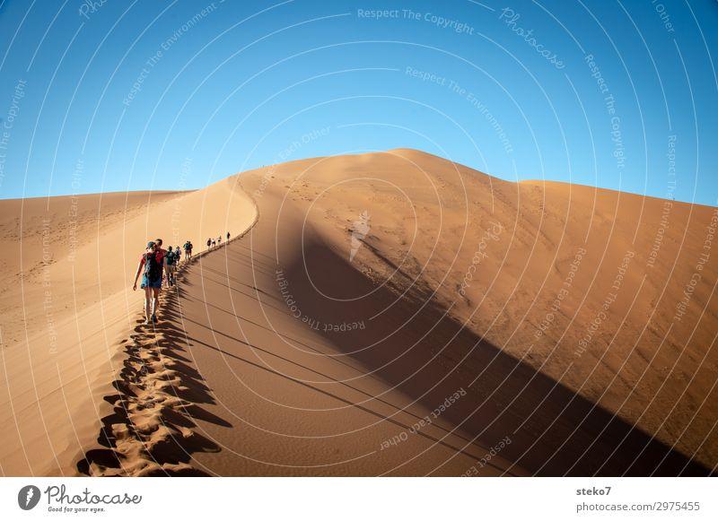 Dünenwanderung Menschengruppe Sand Wärme Dürre Wüste Namib wandern Zusammensein heiß hell blau gelb Durst Abenteuer Tourismus Ferien & Urlaub & Reisen