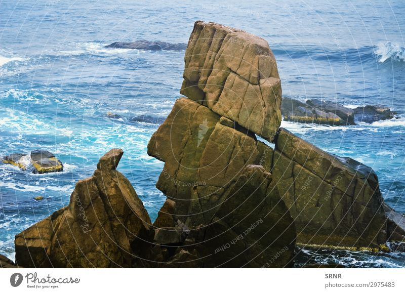 Felsen Meer Umwelt Natur Landschaft Wasser Küste Jachthafen Stein maritim Schwarzes Meer Bulgarien steil abfallend Erde ökologisch Ökosystem Europa marin
