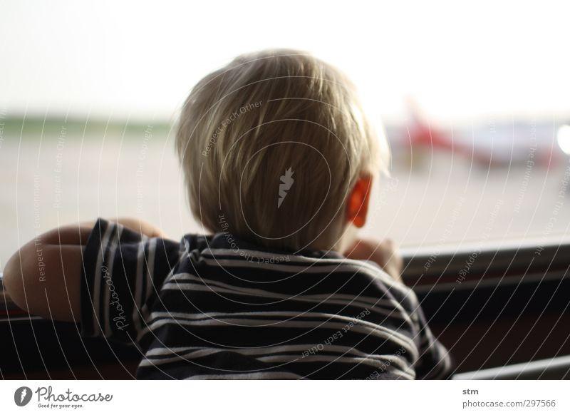 fernweh Mensch Kind Ferien & Urlaub & Reisen Ferne Fenster Leben Junge Haare & Frisuren Kopf Kindheit blond Zufriedenheit warten Tourismus Luftverkehr Flugzeug