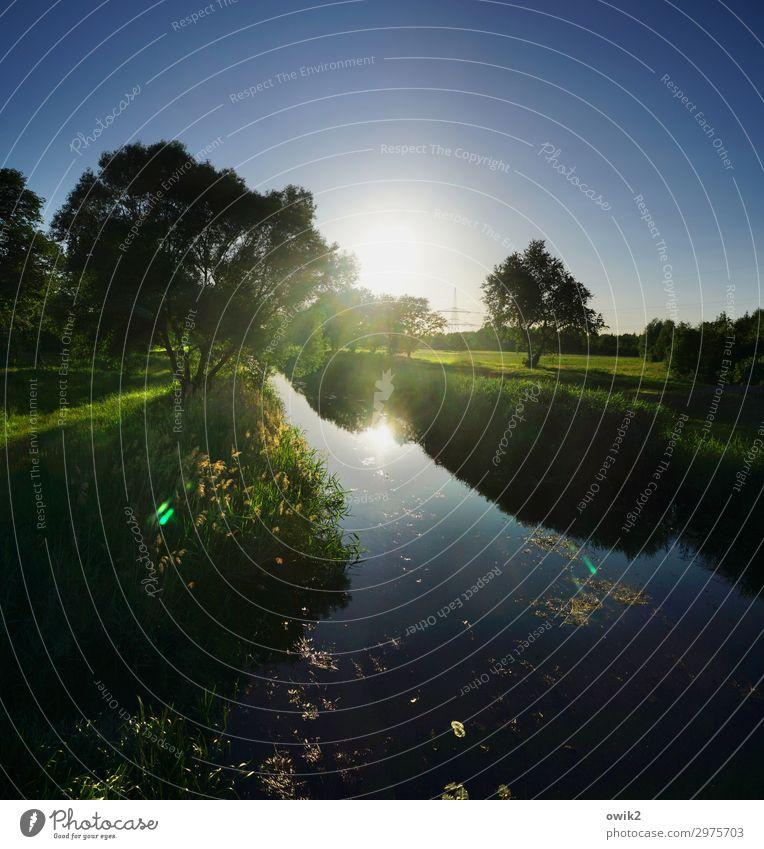 Binnengraben Umwelt Natur Landschaft Pflanze Wasser Wolkenloser Himmel Horizont Sonne Frühling Baum Gras Sträucher Wiese Bach Kanal leuchten Gelassenheit