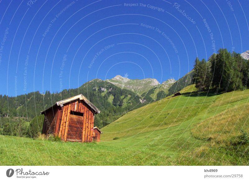 Typischer Kalenderfotoschrott ;-) Natur Baum Sonne grün blau Sommer Ferien & Urlaub & Reisen Einsamkeit Ferne Erholung Berge u. Gebirge Landschaft wandern