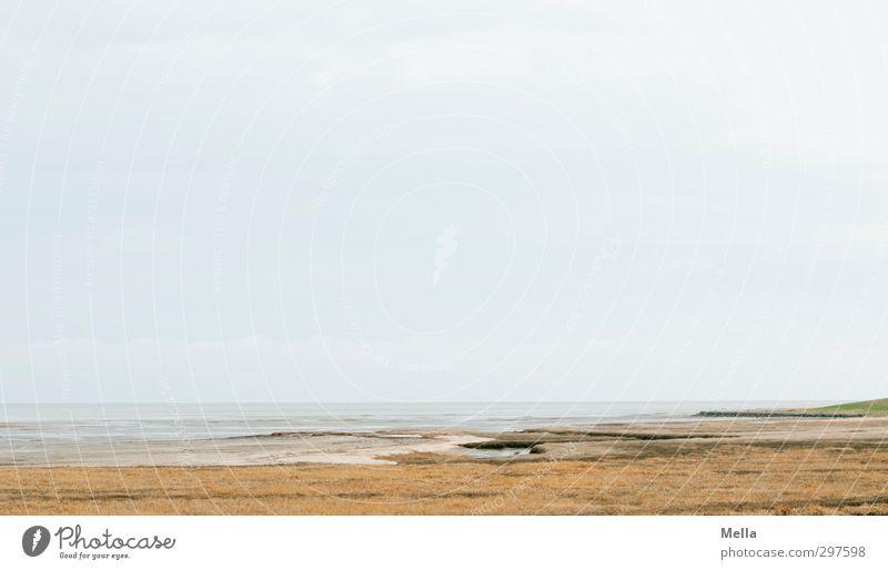Rømø | Motivlos* - und auch nicht Himmel Natur Wasser Meer Landschaft ruhig Umwelt Ferne Gras Freiheit Küste hell Horizont Luft natürlich Erde