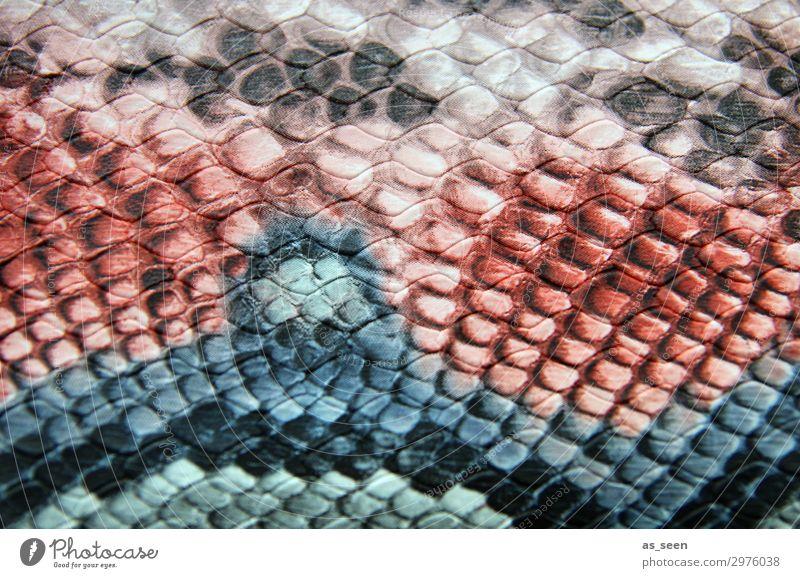 Schlangenmuster Reichtum elegant Stil Design Mode Leder Schlangenleder Schlangenhaut Schlangenmaserung Tier ästhetisch Coolness exotisch trendy blau braun rosa