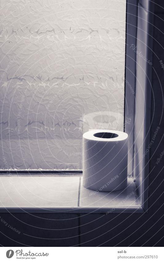 Ecke Körperpflege Häusliches Leben Hausbau Bad Fenster dreckig grau Verschwiegenheit Reinlichkeit Sauberkeit bescheiden Traurigkeit Privatleben privat