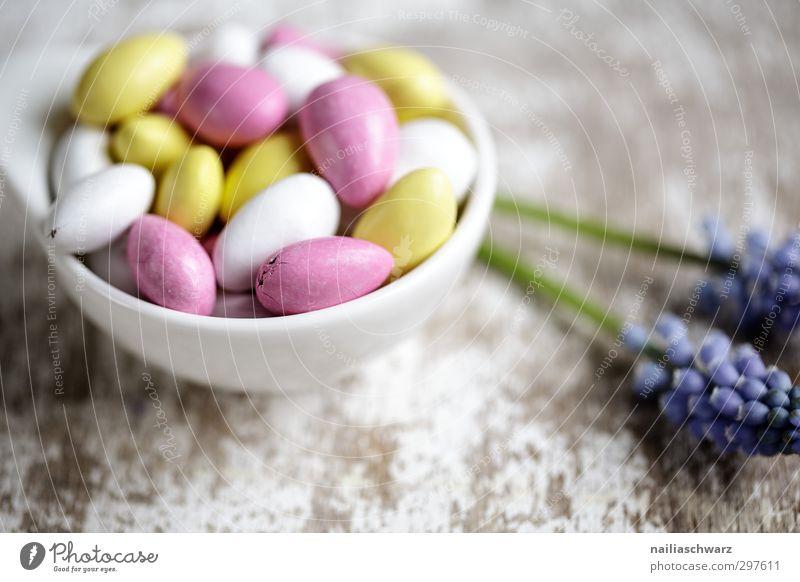 süße Sünde Dessert Süßwaren Nuss Mandel Zuckermandel Ernährung Schalen & Schüsseln einfach frisch schön lecker natürlich niedlich positiv rund blau mehrfarbig