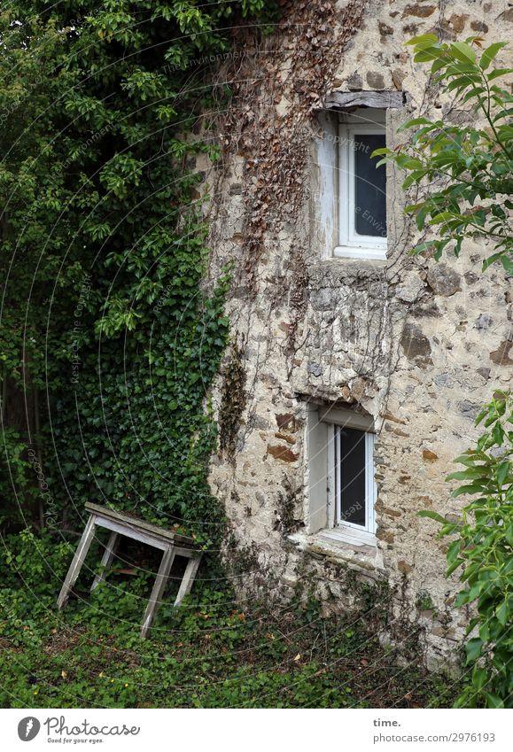 Immer an der Wand lang   angeheitert alt Haus Fenster dunkel Leben Wiese Gebäude Garten Mauer außergewöhnlich Häusliches Leben Wohnung wild Tisch