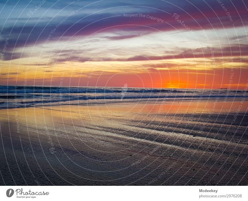 Abendliches Farbenspiel III Umwelt Natur Landschaft Wasser Himmel Wolken Horizont Sonne Sonnenaufgang Sonnenuntergang Sonnenlicht Sommer Schönes Wetter Wellen