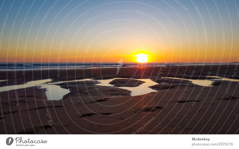 Abendliches Farbenspiel IV Umwelt Natur Landschaft Wasser Himmel Wolken Sonne Sonnenaufgang Sonnenuntergang Sonnenlicht Sommer Schönes Wetter Wellen Küste