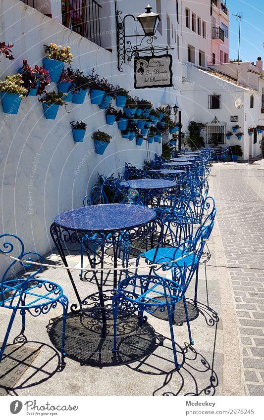 Mijas Sommer Pflanze blau grün weiß rot Blume Haus schwarz Architektur Wand Mauer Fassade Europa Tisch Schönes Wetter