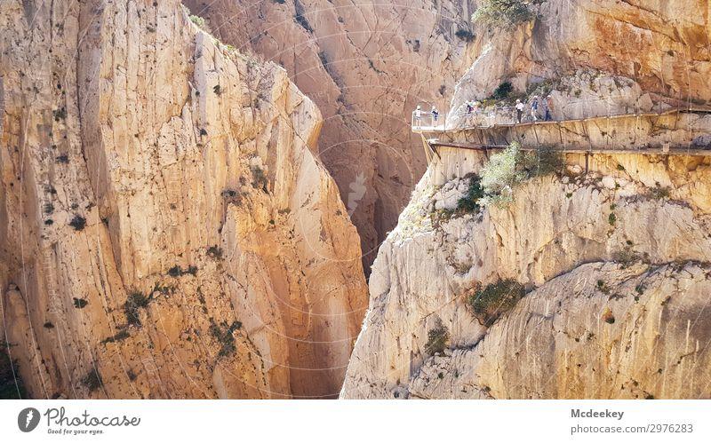 Caminito del Rey Mensch Natur Sommer Stadt Landschaft schwarz Wärme Umwelt Wege & Pfade außergewöhnlich Menschengruppe orange braun grau Felsen Europa