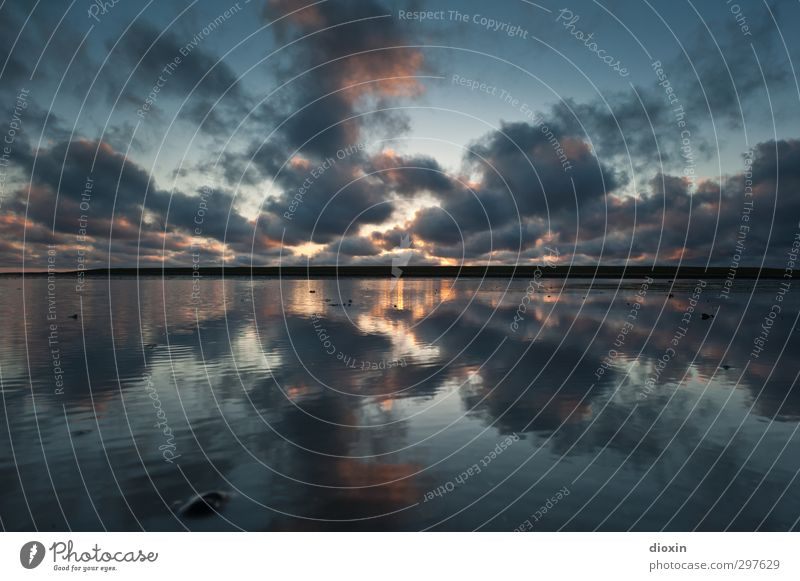 rømø | rørschøchtøst Ferien & Urlaub & Reisen Tourismus Umwelt Natur Landschaft Urelemente Luft Wasser Himmel Wolken Sonnenaufgang Sonnenuntergang Klima Wetter