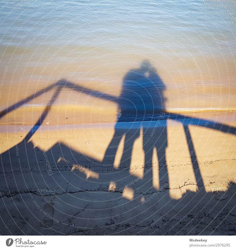Pärchen Love Mensch maskulin feminin Junge Frau Jugendliche Junger Mann Paar Partner 2 30-45 Jahre Erwachsene Natur Landschaft Sand Wasser Sommer Schönes Wetter